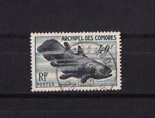 Comores   faune marine poisson  coelacanthe   num: 13   obl