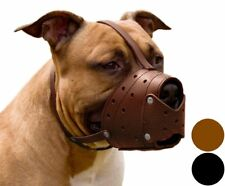 CollarDirect Pit Bull PitBull Terrier Secure Basket Dog Muzzle Genuine Leather