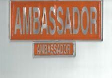 More details for encapsulated reflective ambassador badge set