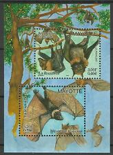 Mayotte Faune Chauve Souris Flying Fox Bats Brillenflughund Fledermaus ** 2001