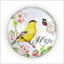 Vintage style victorien, chardonneret oiseau & papillon verre paperweight word hope