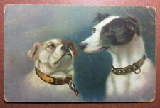 Antique Wenau postcard 1910s Dogs. Pug Mops and Jack Russell Terrier. Favorite
