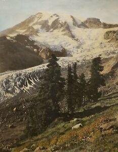 Asahel Curtis 10x8 Hand Tinted Photo, Mt. Rainier and Nisqually Glacier. 1920's.