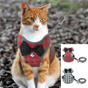 Ceinture de sécurité laisse et harnais en nylon pour chat Rembourré Réglable SML