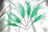 6 green ostrich feathers sprays on wire for decorating cakes,floral crafts