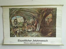 R5933  Lehrtafel - Schultafel - Eiszeitlicher Jetztmensch - Homo Sapiens
