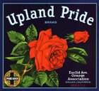 Orange Crate Label 1930s Upland Pride Brand CA Art Print Flowers Roses