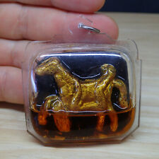 Thai Amulet Ma Saep Nang Horse Lady Erotic In Koo Magic Prai Oil Love Charm