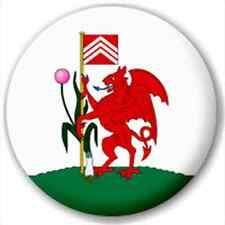 Cardiff - Welsh City Flag 25Mm Pin Button Badge Lapel Pin