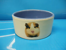 Guinea Pig food and water bowl