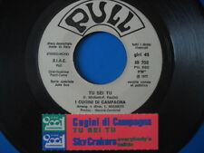 """CUGINI DI CAMPAGNA """"Tu sei tu"""" - RARO 45PR0M0 JB + STICK!!"""