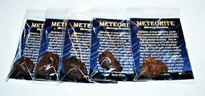 MOROCCAN Chondrite Stony METEORITE - Lot of 5 - Size (L) 11 to 20 grams