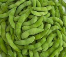 Sayamusume EDAMAME edible soybean Organic  30 seeds Japanease Treat ,Prolific
