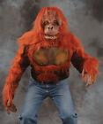 Orangutan Ape Shirt Zagone Studios Halloween Costume