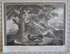 Eau Forte Originale XVIIIème - Scène de Chasse - Chiens - Jean-Baptiste Oudry