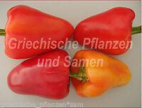ANTOHI ROMANIAN * Paprika süß aus Rumänien * 10 Samen * für Balkon und Kübel