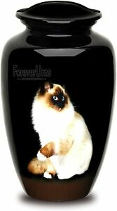 Urns For Human Ashes-Sitting Cat Pictured Adult Cremation Urn For Human Ashes