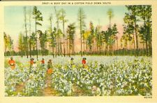 A Busy Day in a Cotton Field down South