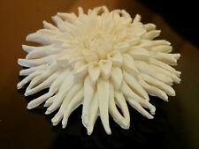 Vintage 60's Cellu Plastic White Mum Flower Brooch Pretty 210j7