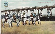 The Natives, Donkeys & Pier, CLEETHORPES, Lincolnshire