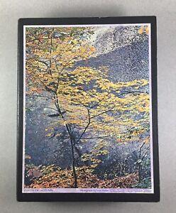 Springbok~LEAVES OF AUTUMN PATTERNS~Bookcase Puzzles (2)~ Vtg. 1971 Sierra Club~