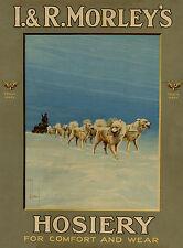 SAMOYED SLED DOG TEAM OLD ADVERT IMAGE ON GREETINGS NOTE CARD