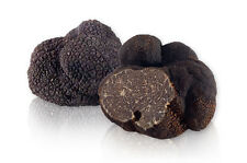 10 g Fresh BLACK TRUFFLE Tuber Melanosporum Mushroom Spawn Mycelium Spores Seeds