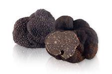 10 g BLACK TRUFFLE Seeds Tuber melanosporum Mushroom Mycelium Spawn + Free eBook