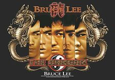 Bruce Lee Splitting Images large fabric poster / flag 1100mm x 750mm (hr)