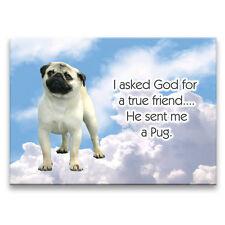 Pug True Friend From God Fridge Magnet New Dog Fawn