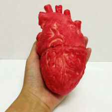 Halloween Decor Human Heart Bloody Zombie Food Chop Body Part Organ Scray Props