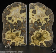 17.77 lbs Septarian Geode Nodule Bookends Utah Dragon Stone Polished 0136