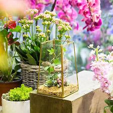 Glass Geometric Terrarium Tabletop Succulent Plant Planter Plant Pot Decorative