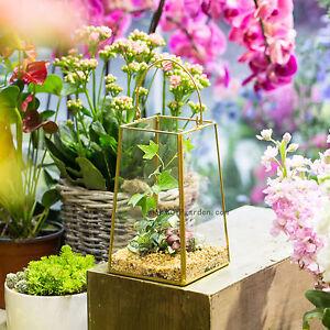Hanging Brass Geometric Lantern Candle Holder Terrarium Glass Planter Lamp Decor