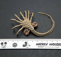 "1/6 Alien Animal Predator Facehugger Larva Model Insect for 12"" Figure Action"