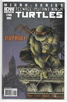 Teenage Mutant Ninja Turtles Micro-Series 1 Raphael 1st Alopex A Variant