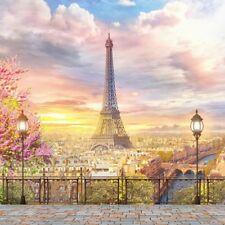 Eiffel Tower Sunset Backdrop City Scenic Background Studio Photo Props 10x10ft