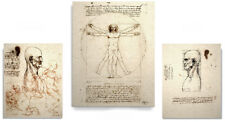 Leonardo da Vinci sketch Art Print Set