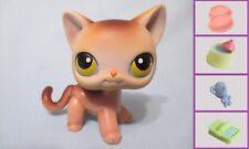 Littlest Pet Shop LPS #19 Short Hair Cat Eyes +1 FREE Accessory 100% Authentic