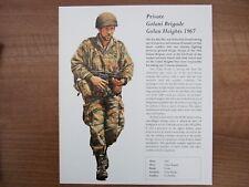 MODERN MILITARY PRINT-ISRAELI ARMY-PRIVATE GOLANI BRIGADE GOLAN HEIGHTS 1967