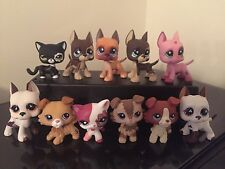 2 pcs Random Littlest Pet Shop LPS Collies Great Danes Dog Cat Rare USA SELLER
