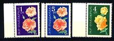 BULGARIA - 1962 - Rose Precious (Rosa hybrida)