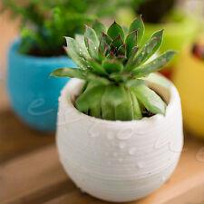 New listing White Mini Round Plastic Plant Flower Pot Garden Home Office Decor Planter
