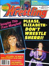 ELIZABETH/SHERRI Inside Wrestling November Magazine 1989 STING/TERRY FUNK