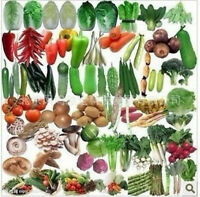 Balcony Vegetables Package Seeds Plants Bonsai Organic Mix 100pcs/lot