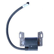 Ignition Coil For Briggs & Stratton 490586 491312 492341 495859 286702 31G777 US
