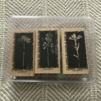 STAMPIN UP Reverse Prints STAMPS SET of 3 Mother Theresa Emerson Flowers EUC