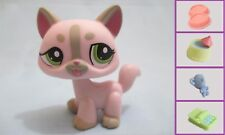 Littlest Pet Shop #1326 Pink Gray Grey Stripe Cat +1 FREE Accessory Authentic