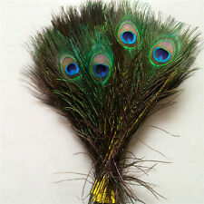 Wholesale 10-100pcs Peacock feathers eye 10-12 inches / 25-30 cm Yellow