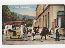 Madeira Funchal Carro De Bois Vintage Postcard  245a